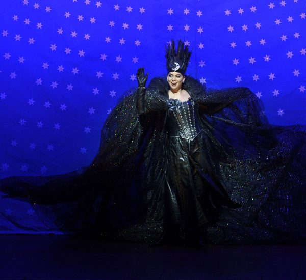 Queen of the Night, The Canadian Opera Company, January-February 2017, Photo by Gary Beechey